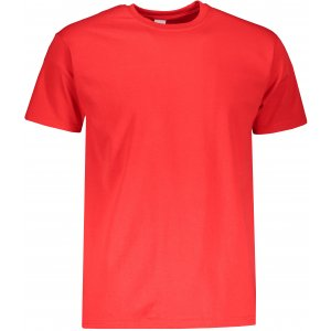 Pánské triko s krátkým rukávem FRUIT OF THE LOMM SUPER PREMIUM T RED